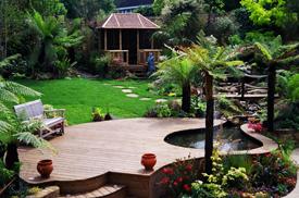 Clapham Garden Designers
