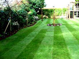 Garden Designers garden designs Chertsey Garden Designers