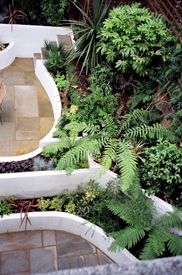 Garden Landscaping and Designs