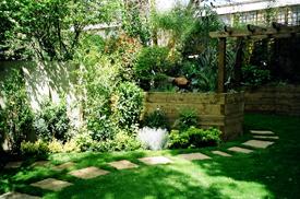 London Organic Garden Designs