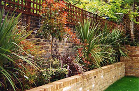 Planting schemes for london gardens for Planting schemes for small gardens