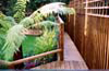 Staines Decking